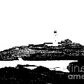 Monochromatic Godrevy Island And Lighthouse by Terri Waters