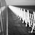 Monochrome Sun Deck by Anne Gilbert