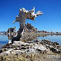 Mono Lake 5709 by Ron Brown Photography