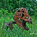Monster In The Grass by Tommy Anderson