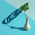 Monstera Leaf In Vase With Strong Shadow by Juj Winn