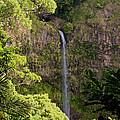 Montagne D'ambre National Park Madagascar 3 by Rudi Prott
