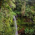 Montagne D'ambre National Park Madagascar 5 by Rudi Prott
