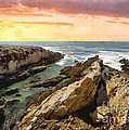Montana De Oro Shore II by Sharon Foster
