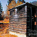 Montana Outhouse 03 by Thomas Woolworth