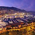 Monte Carlo Harbor  by Ioan Panaite