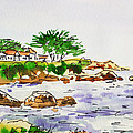 Monterey- California Sketchbook Project by Irina Sztukowski