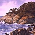Monterey Glory by Tom Wooldridge