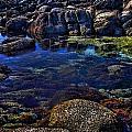 Monterey Pool by Joe Bledsoe