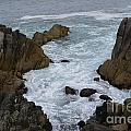 Monterey Rocks - California by S Mykel Photography