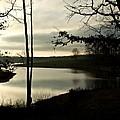 Monterey Silver Lake by Douglas Barnett
