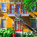 Montreal Art Seeing Red Verdun Wooden Doors And Fire Hydrant Triplex City Scene Carole Spandau by Carole Spandau