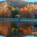 Montreat Autumn by Lydia Holly