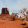 Monument Valley by Thomas and Thomas Photography