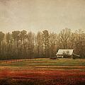 Moody Morning Stillness by Paulette B Wright