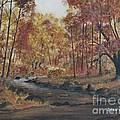 Moody Woods In Fall by Dana Carroll