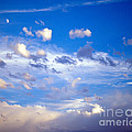 Moon And Clouds by Tracy Knauer
