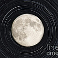 Moon And Startrails by Darleen Stry