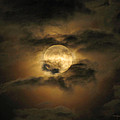 Moon In May by Karen Casey-Smith