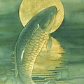 Moon Koi by Robert Hooper