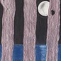 Moon Light by David Jackson