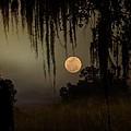 Moon Mists by John Stokes