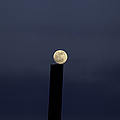 Moon On A Post by Fran Riley