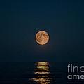 Moon Over Lake Of Shining Waters by Barbara McMahon