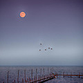 Moon Over Lake Mille Lacs by Paul Freidlund