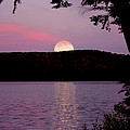 Moon Over Parks Pond by Jack Zievis