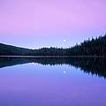 Moon Rise by Leland D Howard