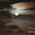 Moon Shine 2 by Karen Adams