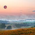 Moon Valley Morning by Randall Branham