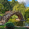 Moonbridge - The Beautifully Renovated Japanese Gardens At The Huntington Library. by Jamie Pham