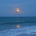 Moonglow by Carol  Bradley