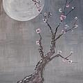 Moonlight Blossoms Gekkoka by Steve  Lucas