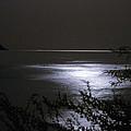 Moonlight Reflection by Patrick Kessler