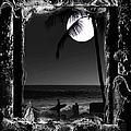 Moonlight Surf by Athala Carole Bruckner