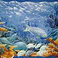 Moonlight Swim by Deborah Younglao