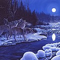 Moonlight Visitors by Don Ningewance