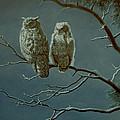 Moonlight Watchers by Paul Krapf