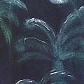 Moonlit Palms by Mickey Krause