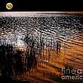 Moonrise After Sunset by Kaye Menner