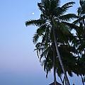 Moonrise In Maldives by Corinne Rhode