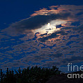 Moonscape by Robert Bales