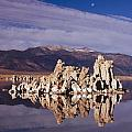 Moonset Over Tufa by Tom Daniel