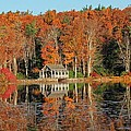 Moore State Park Autumn I by Michael Saunders