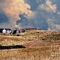 Moors Of Block Island by Skip Willits