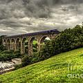 Moorswater Viaduct  by Rob Hawkins