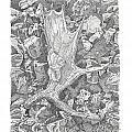 Moose Antler Shed by Kenneth or Susan Posselt